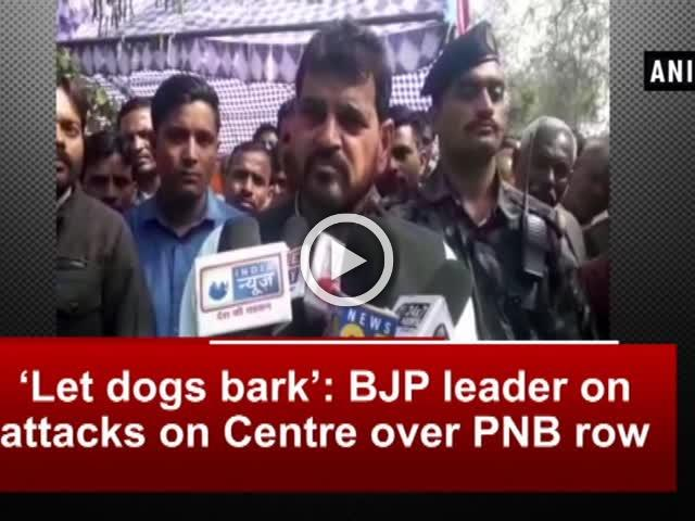 'Let dogs bark': BJP leader on attacks on Centre over PNB row