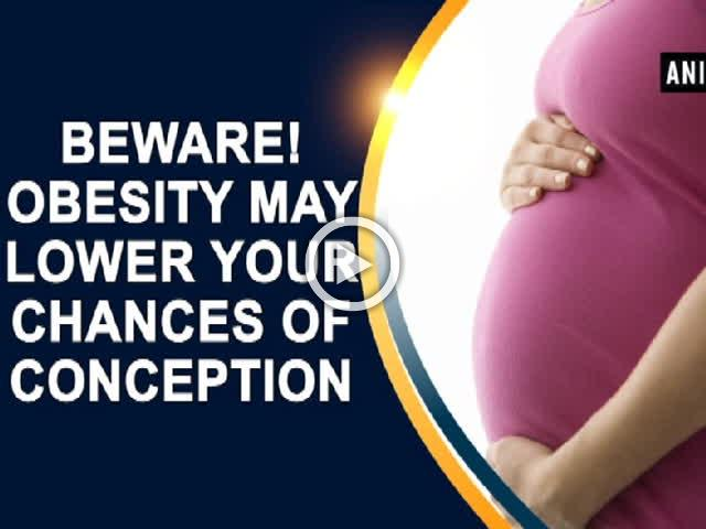 Beware! Obesity may lower your chances of conception
