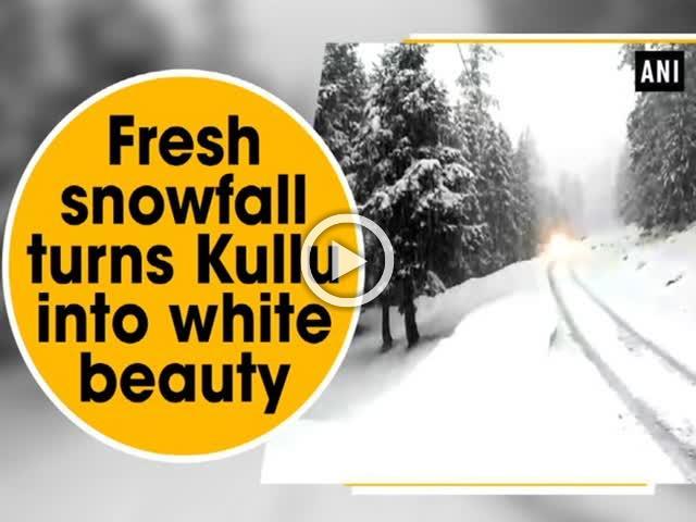 Fresh snowfall turns Kullu into white beauty