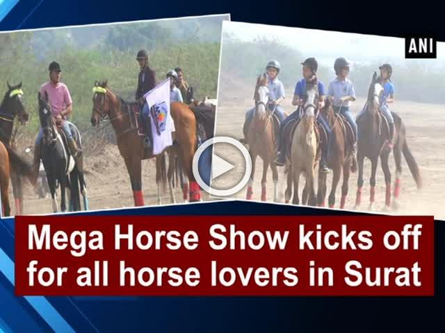 Mega Horse Show kicks off for all horse lovers in Surat