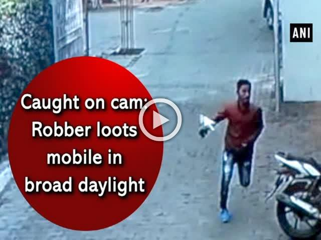 Caught on cam: Robber loots mobile in broad daylight