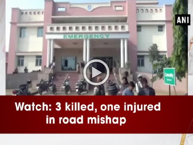 Watch: 3 killed, one injured in road mishap