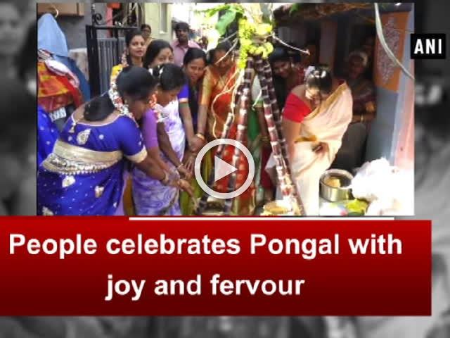 People celebrates Pongal with joy and fervour
