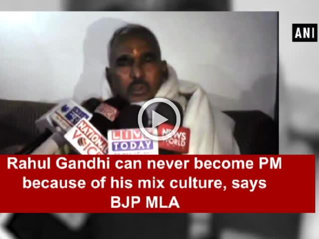 Rahul Gandhi can never become PM because of his mix culture, says BJP MLA
