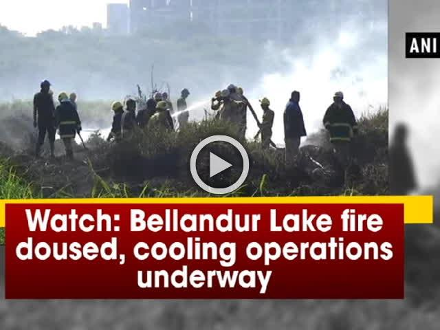 Watch: Bellandur Lake fire doused, cooling operations underway