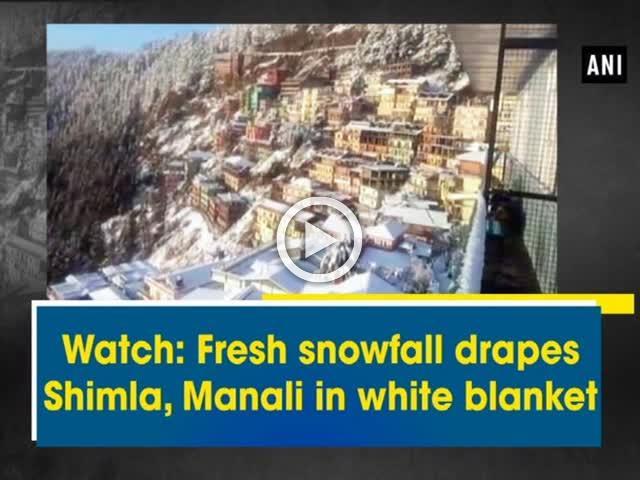 Watch: Fresh snowfall drapes Shimla, Manali in white blanket