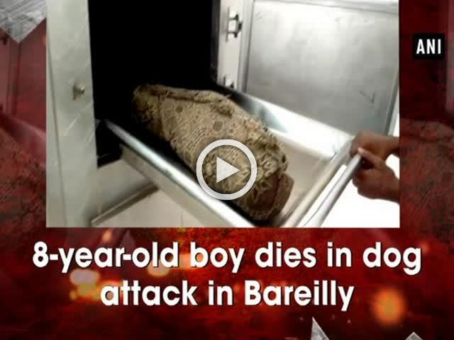8-year-old boy dies in dog attack in Bareilly