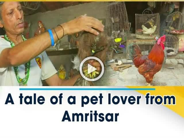 A tale of a pet lover from Amritsar