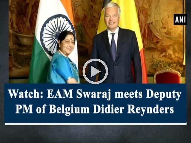 Watch: EAM Swaraj meets Deputy PM of Belgium Didier Reynders