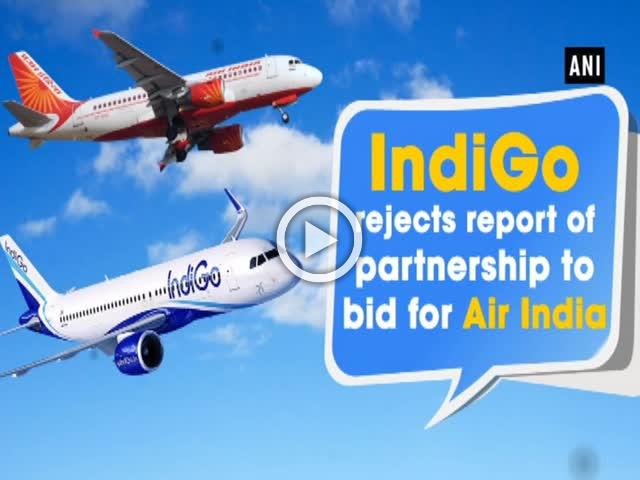 IndiGo rejects report of partnership to bid for Air India