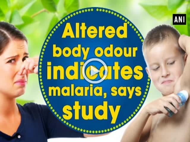 Altered body odour indicates malaria, says study