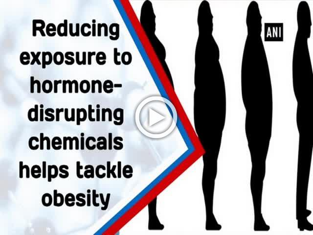 Reducing exposure to hormone-disrupting chemicals helps tackle obesity