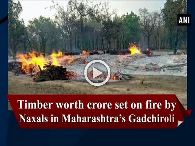 Timber worth crore set on fire by Naxals in Maharashtra's Gadchiroli