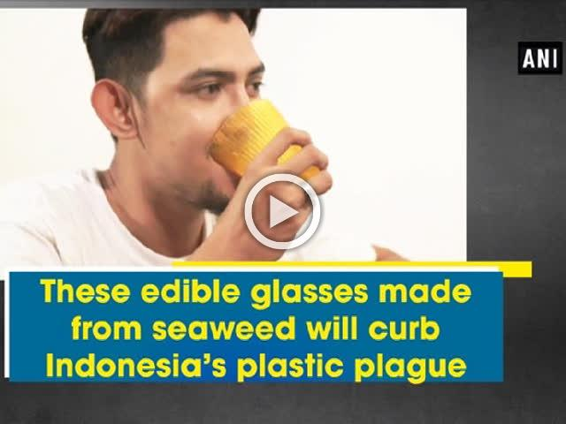 These edible glasses made from seaweed will curb Indonesia's plastic plague