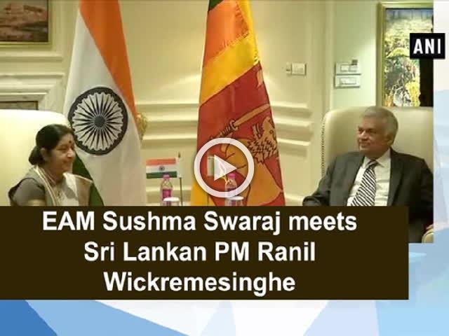 EAM Sushma Swaraj meets Sri Lankan PM Ranil Wickremesinghe