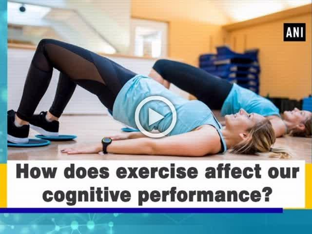 How does exercise affect our cognitive performance?