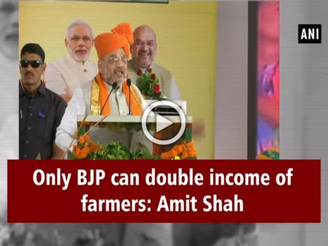 Only BJP can double income of farmers: Amit Shah