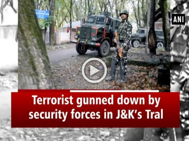 Terrorist gunned down by security forces in Jammu and Kashmir's Tral