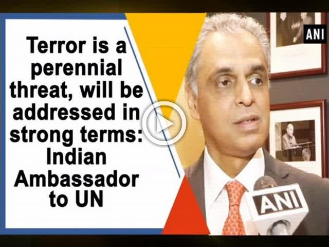 Terror is a perennial threat, will be addressed in strong terms: Indian Ambassador to UN