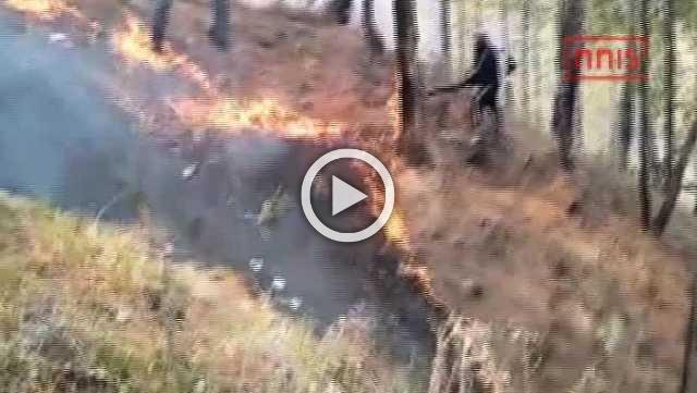 Fire Rages In Uttarakhand In Past 7 Days