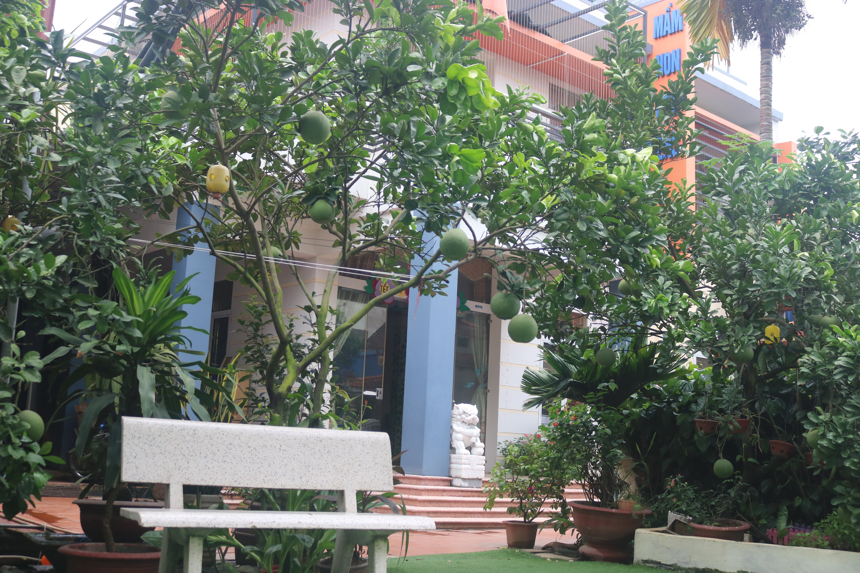Trường mầm non Hung Yen Children's House - Vĩnh Khúc
