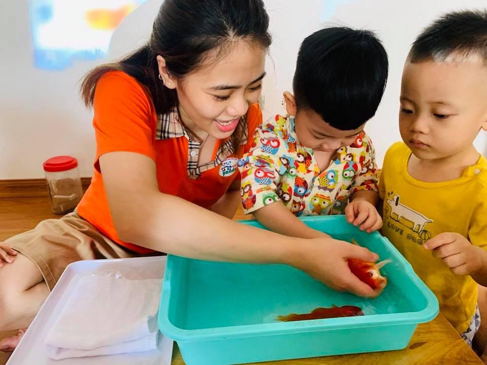Trường mầm non Panda House Montessori - CS1 Trương Định