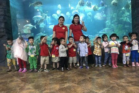 Trường mầm non Quỳnh Lôi - Hai Bà Trưng