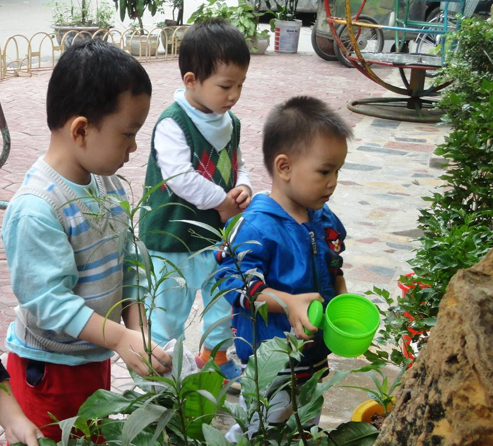 Trường mầm non Bông Mai - Nghĩa Tân