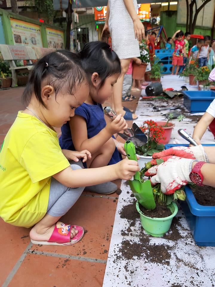 Trường mầm non Búp Sen Xanh - Đại học Sư Phạm Hà Nội ( Dịch Vọng Hậu )