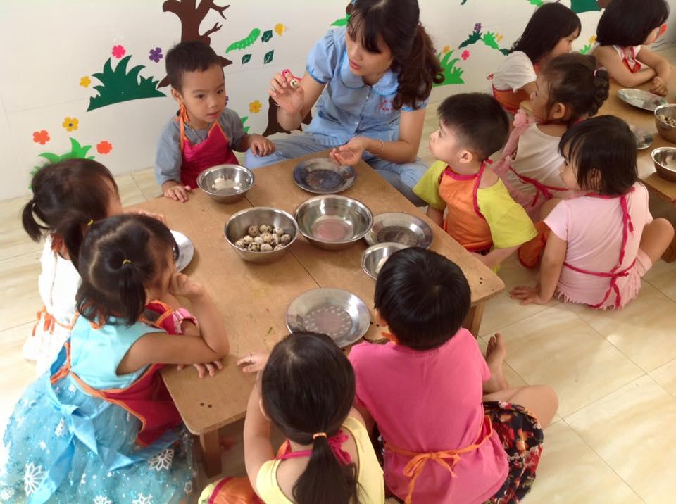 Trường mầm non Kim Mai - Xuân Đỉnh