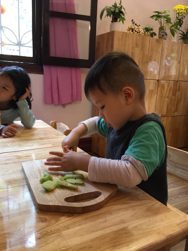 Trường mầm non Mầm Xanh Steiner - Inspired School - Đào Tấn