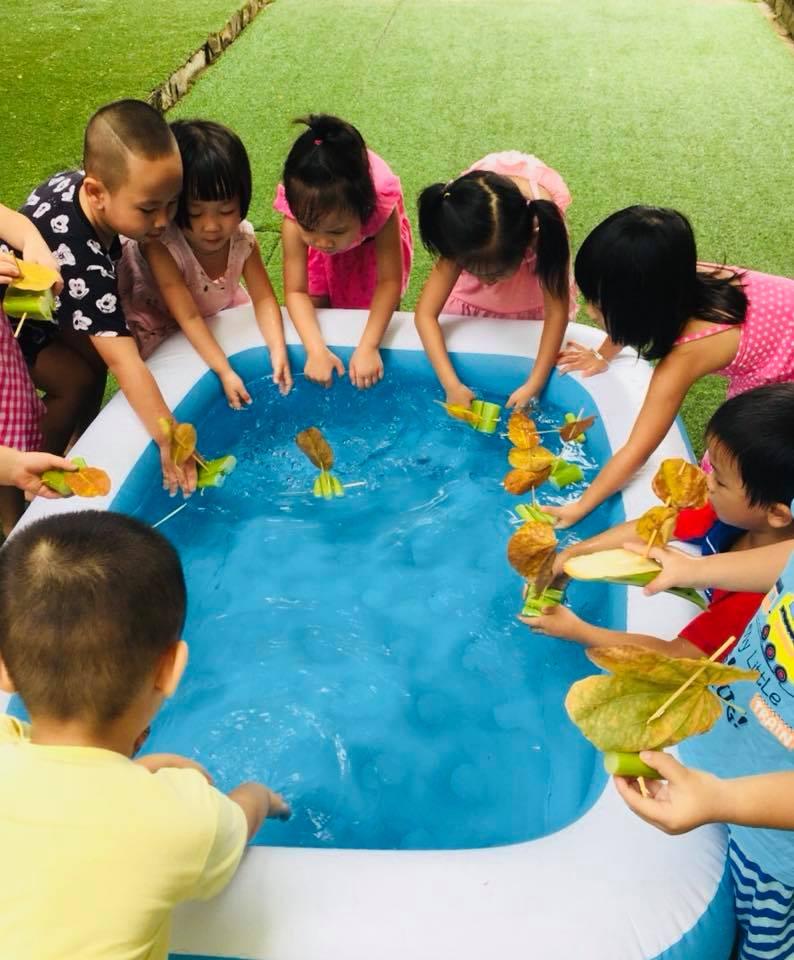 Trường mầm non Ngôi Sao Mới New Star Kids - Dịch Vọng