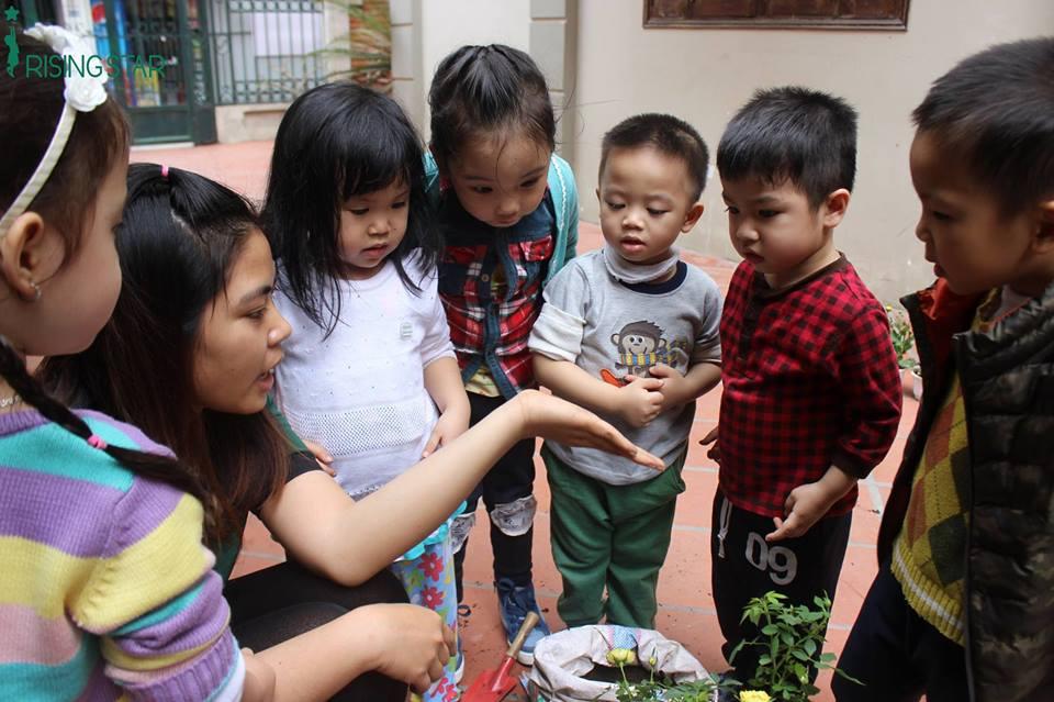 Trường mấm non Rising Star - Kim Mã