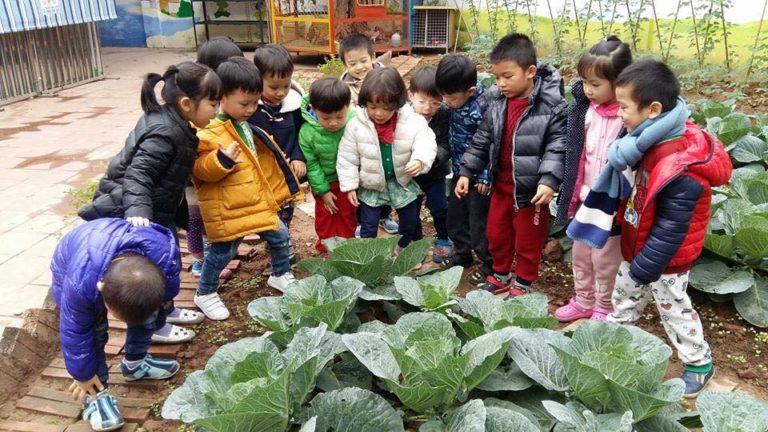 Trường mầm non Trăng Đỏ (RED Moon) - Trung Hòa
