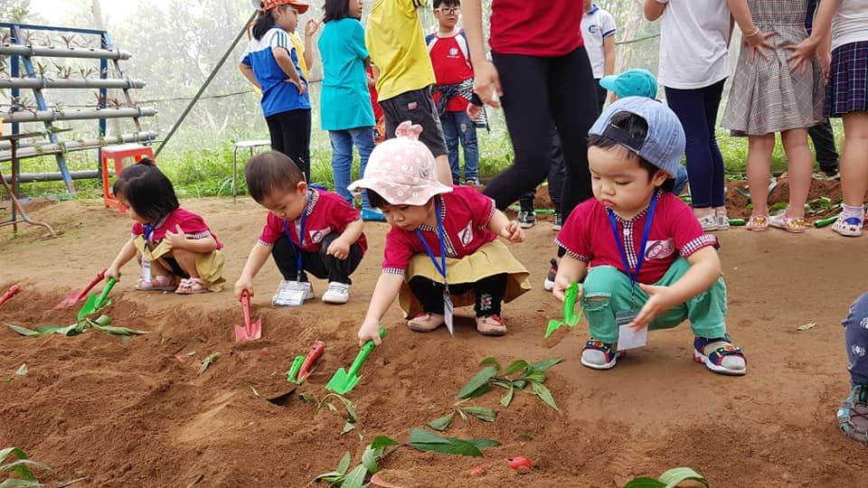 Trường Học Viện Mầm Non Giáo Dục Sớm Osaka (Osaka Montessori Academy) - KĐT Văn Quán