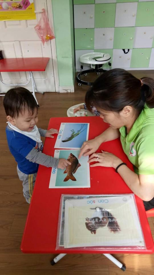 Trường mầm non BiBi - Trung Hòa