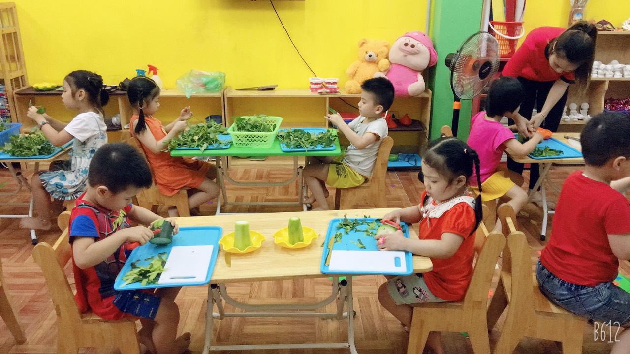 Trường mầm non Bồ Công Anh - Định Công Hạ