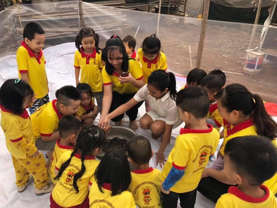 Trường mầm non Chú Kiến Nhỏ - Việt Trì