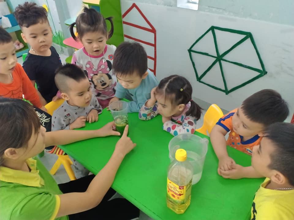 Trường mầm non Gấu Trúc - Đình Đông