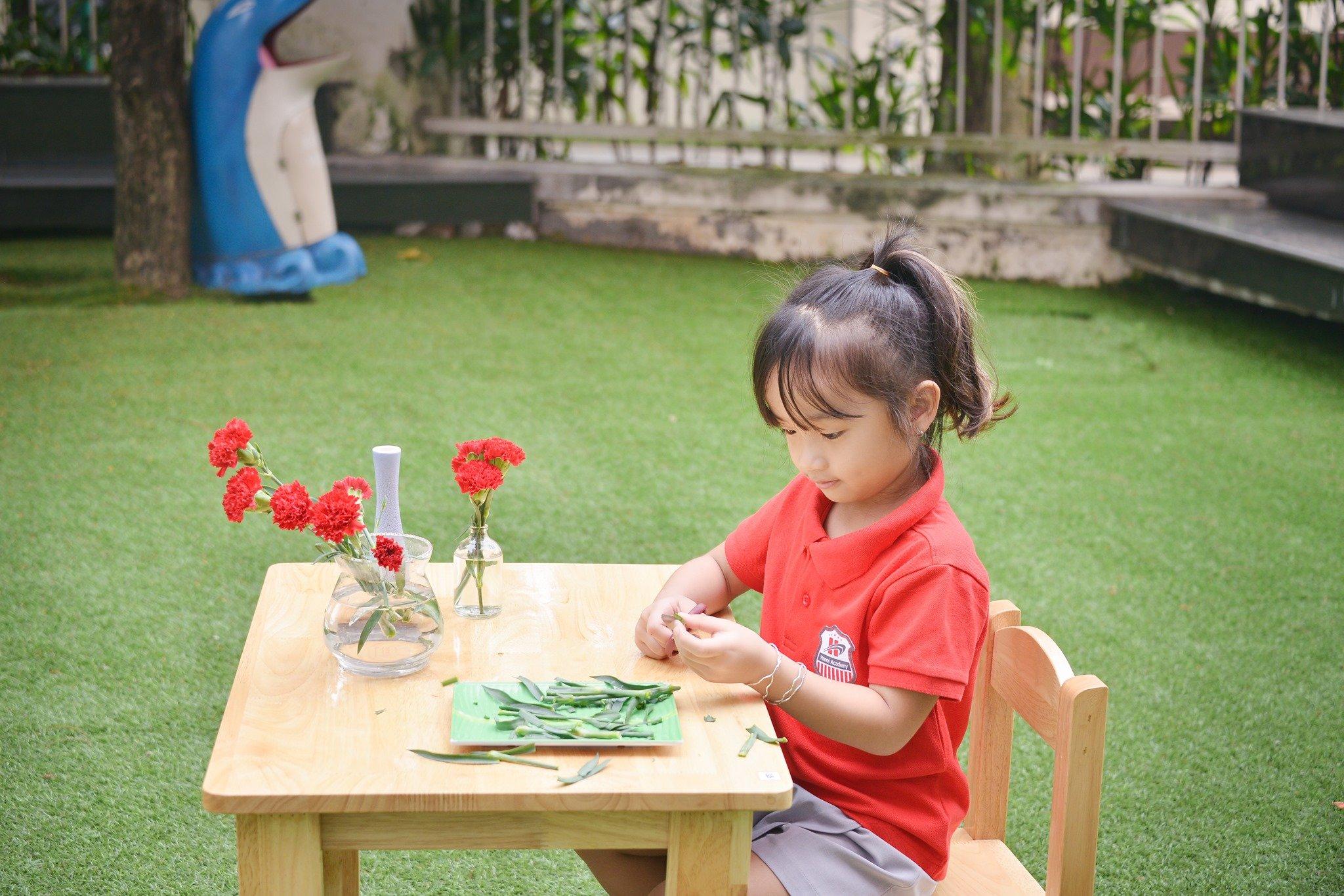 Trường mầm non Hanoi Academy - Phú Thượng