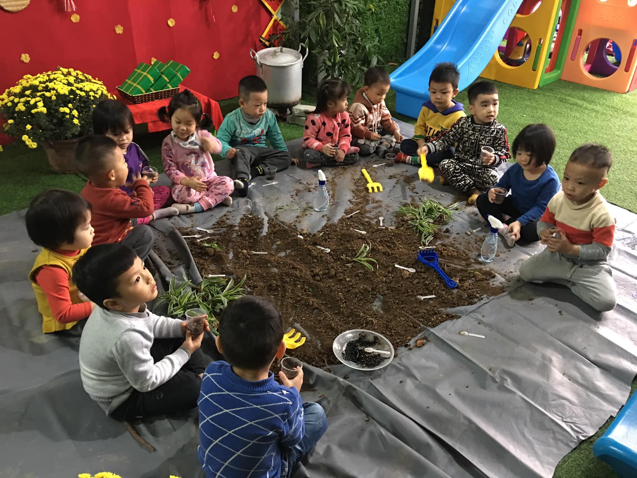 Trường mầm non Hoa Quỳnh - Hoa Lâm