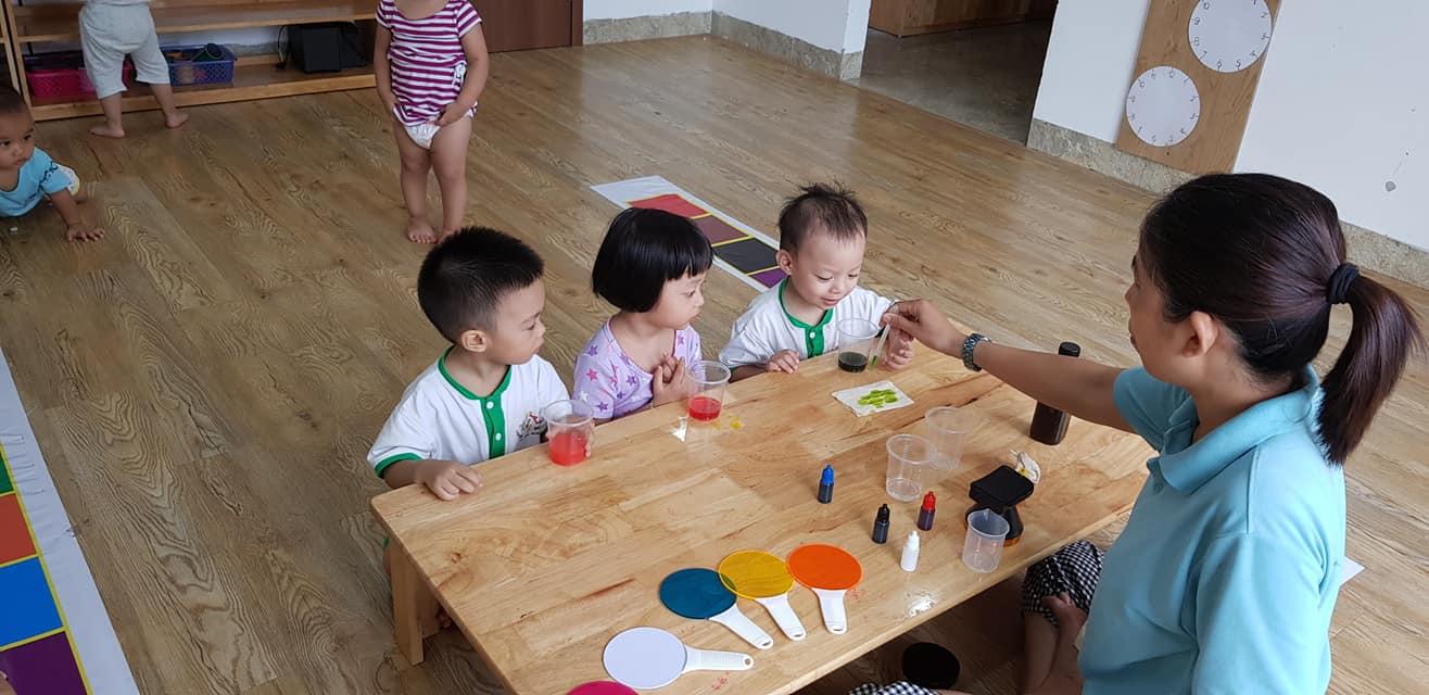 Trường mầm non Kiến Vàng ( Golden Ants Pre-school ) - Ecopark, Văn Giang