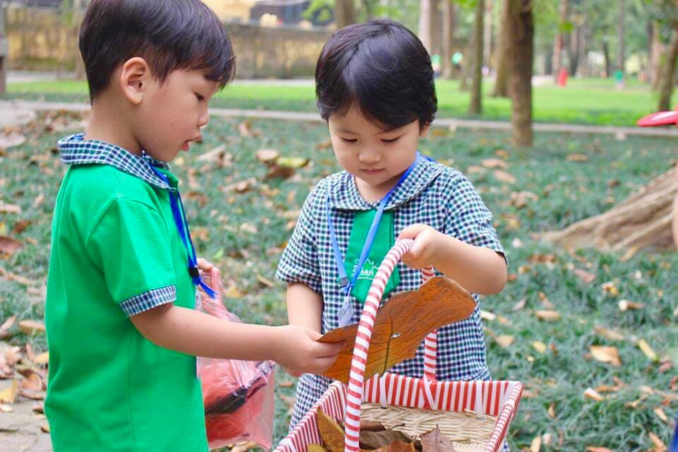 Trường mầm non Lá Phong Xanh An STEM (The Maple Leaf Montessori Academy & STEM Academy) - An Hưng