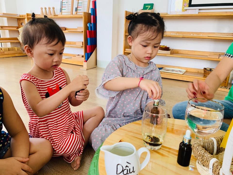 Trường mầm non Lá Phong Xanh (Maple Leaf) - Yên Hòa