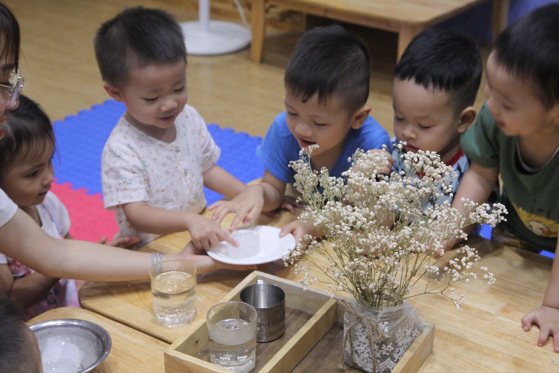 Trường mầm non Little Lighthouse Kindergarten - Đặng Tiến Đông