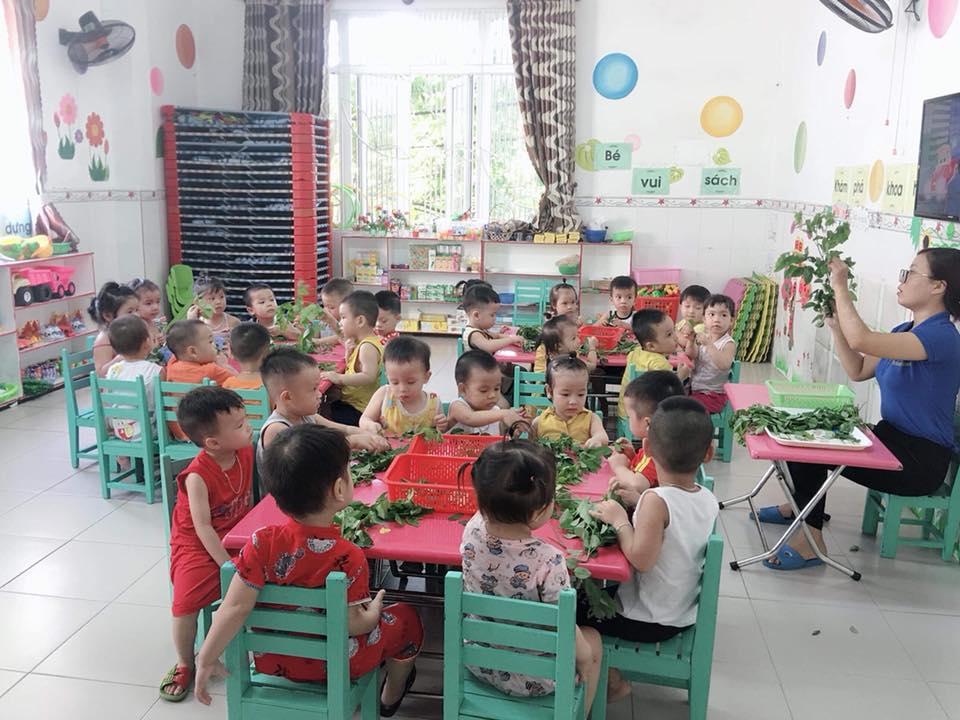 Trường mầm non Mầm Xanh - Cẩm Bắc
