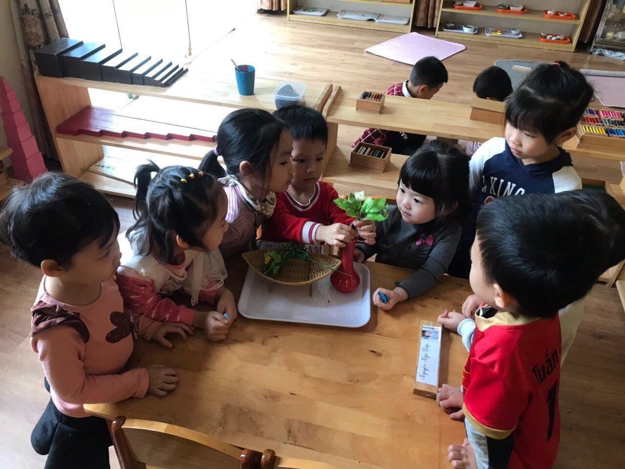 Trường mầm non Mon HCH (Hung Yen Children's House) - Vĩnh Khúc