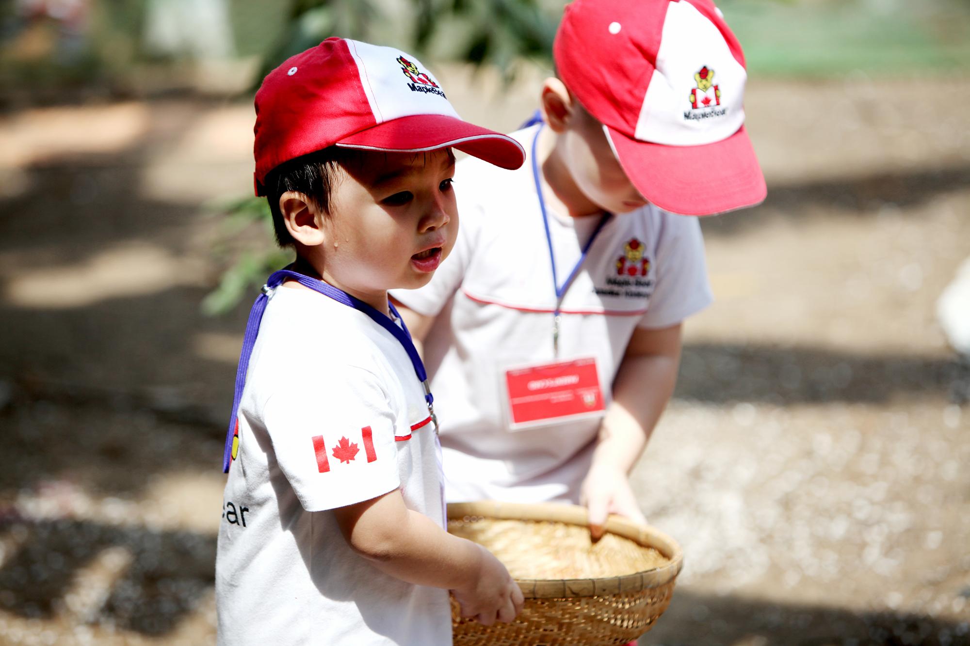 Trường mầm non quốc tế Canada Maple Bear Long Biên - Ngọc Thụy