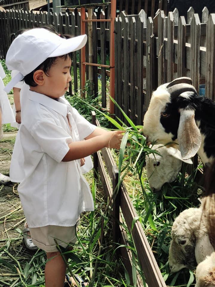Trường mầm non Quốc Tế Ngôi Sao Sáng (Bright Star CDC) - Tân Hưng