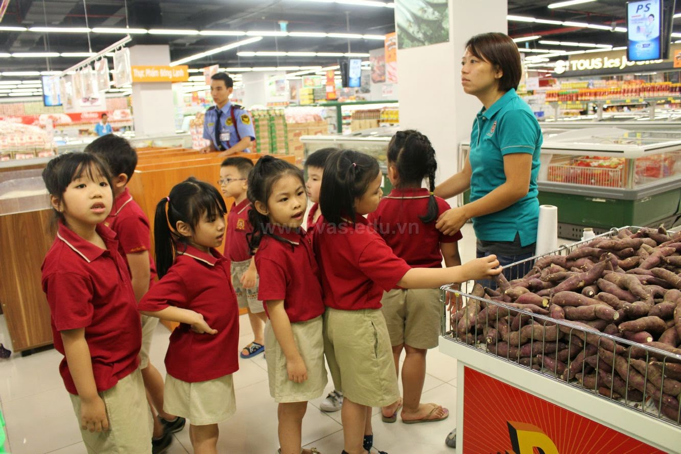 Trường mầm non quốc tế Việt Úc - Phường 5
